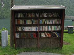Bücherdorf Fjærland